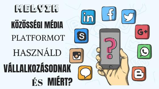 Melyik közösségi platformot használd vállalkozásod számára és miért?