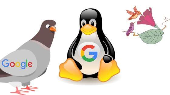 A Google algoritmusok rövid története és jellemzői